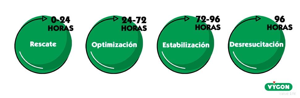 Fases reanimación hídrica