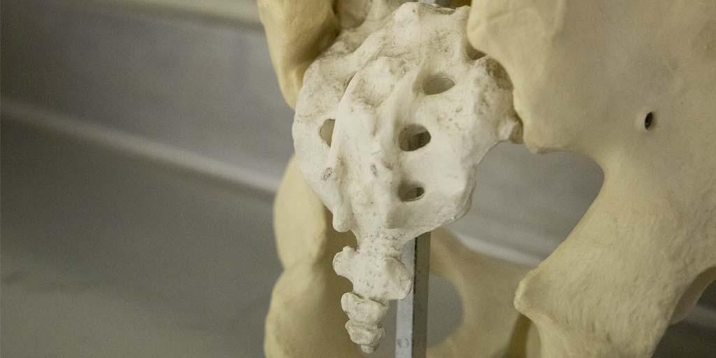 El futuro de la anestesia locorregional II. Abordaje integral del dolor crónico