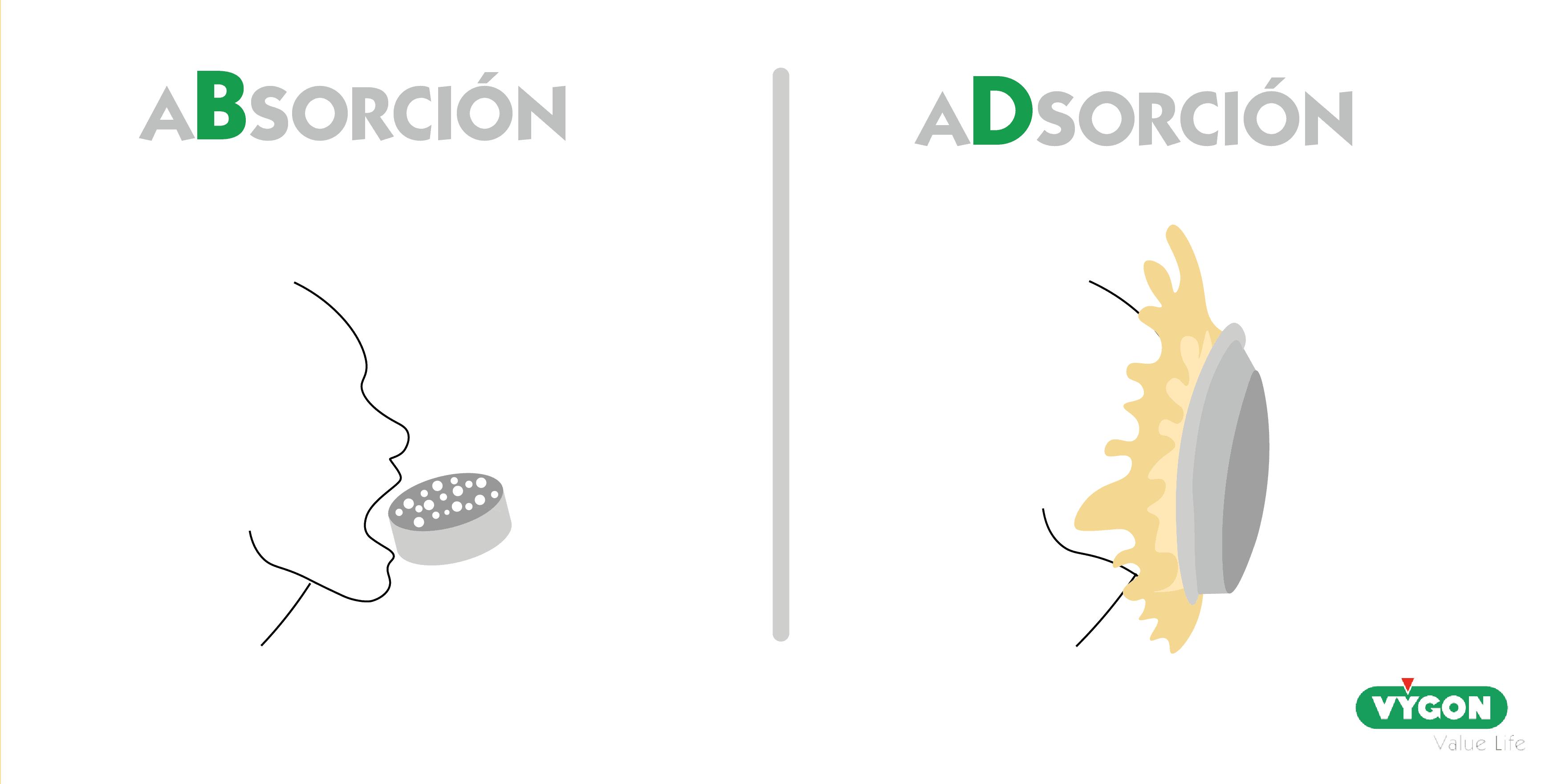 adsorción y absorción