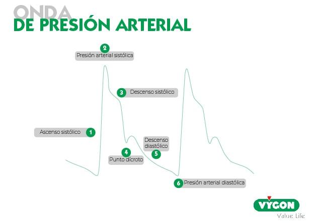 onda presión arterial