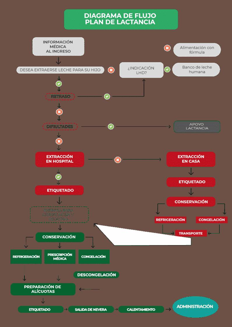 Diagrama de flujo: plan de lactancia