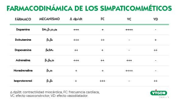 Farmacodinámica de los simpaticomiméticos