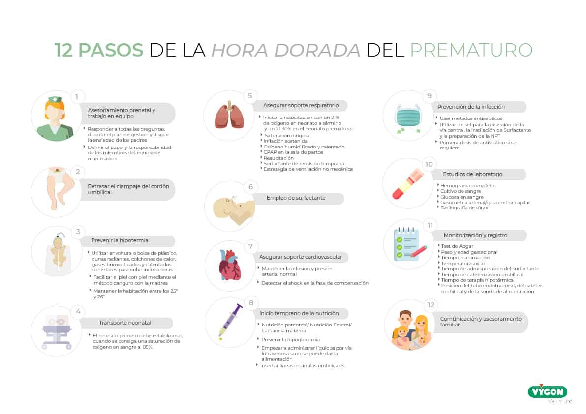 12 PASOS HORA DORADA