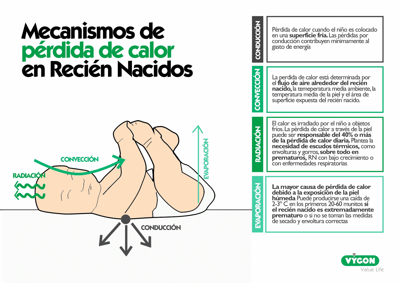 Mecanismos de pérdida de calor