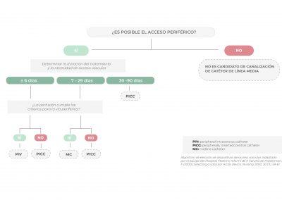 Diagrama de elección Líneas Medias en neonatos